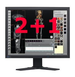 Dual Head 2MP EIZO RadiForce Color LCDs with Matrox PCI Graphic Card Picture