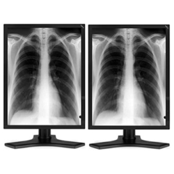 Dual Head 3MP NEC Medical Grayscale LCD w/ 5 Year Wnty & Hot Swap Picture