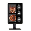 Single Head Barco Nio 2MP LED High-Bright Color Thumbnail